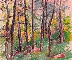 Woods 99