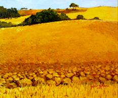 Landscape 2009